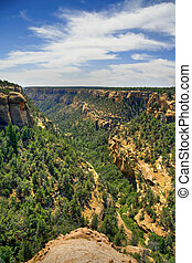 Canyon - A view of a Canyon in Mesa Verde, Colorado