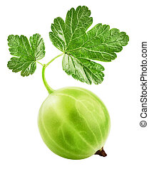 Gooseberries - Green Ripe Gooseberries isolated on a white...