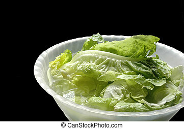 lettuce in a bowl on black background