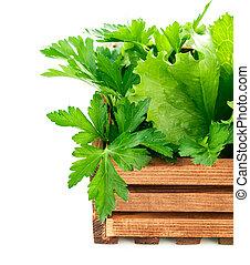 木制, 新鮮, 箱子, 藥草