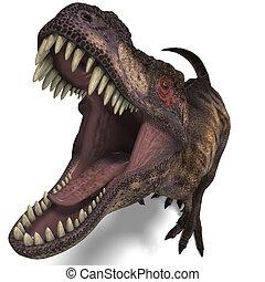 Tyrannosaurus, Rex
