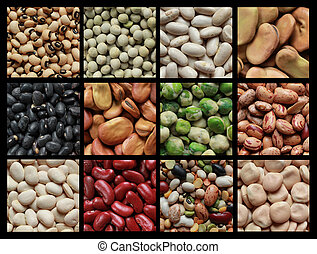 Collage of beans - Collage showing different kind of beans...