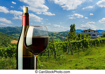 bottle and glass of red wine on the background of vineyard in Tu