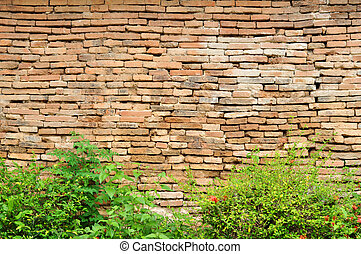 Brick walls and hedges - Old brick walls and bushes in...