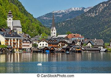 Hallstatt village, Austria - Swan in lake against Hallstatt...