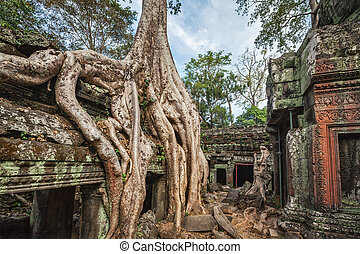 Ancient ruins and tree roots, Ta Prohm temple, Angkor,...