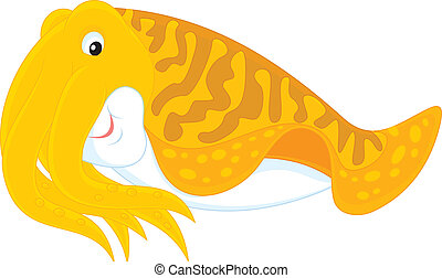 Cuttlefish - Vector clip-art illustration of a swimming...
