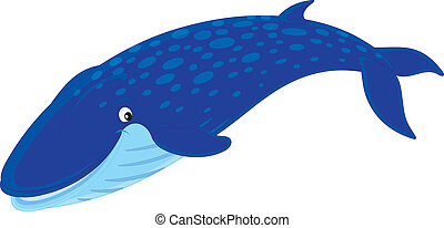 Blue whale - Vector clip-art illustration of a swimming blue...