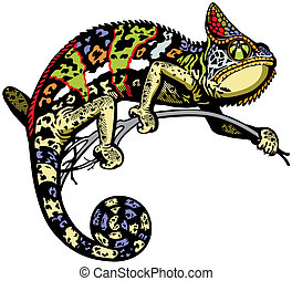 chameleon lizard side view isolated image
