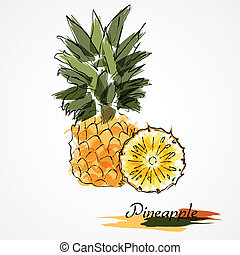 Pineapple fruit slice - Hand drawn pineapple ripe fruit...