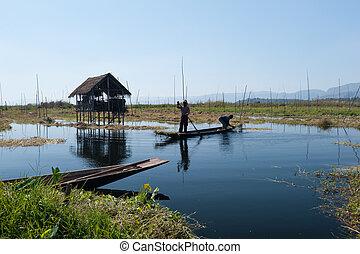Inle Lake Myanmar, Shan state. Floating gardens of rural Intha