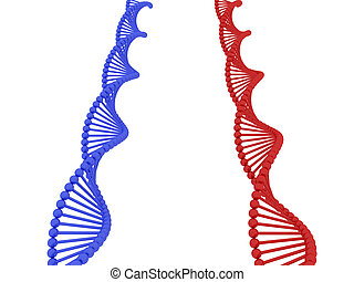 Dna 3d - 3d render of DNA on white background