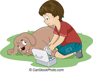 Dog First Aid - Illustration of a Little Boy Applying First...