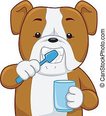 Bull Dog Toothbrush - Illustration of a Bull Dog Brushing...