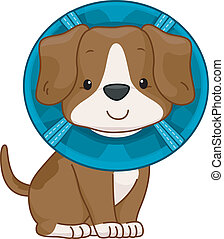 Elizabethan Collar Dog - /Illustration of a Cute Dog Wearing...