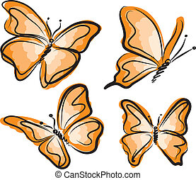 orange butterfly illustration