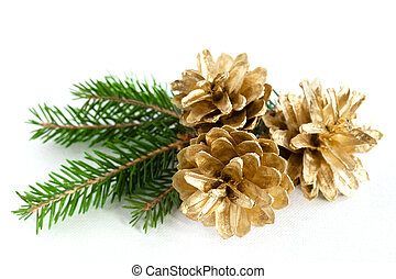 Pine cones - Three big pine cones on the white background