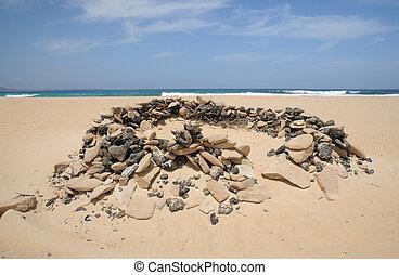 Windbreak on the beach of Fuerteventura, Spain