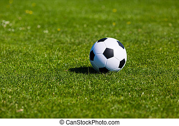 Green pitch with soccer ball - Black and white soccer ball...