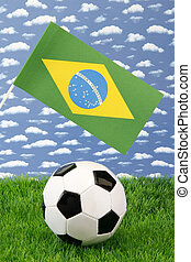 Brazilian soccer - Soccerball on grass with brazilian...