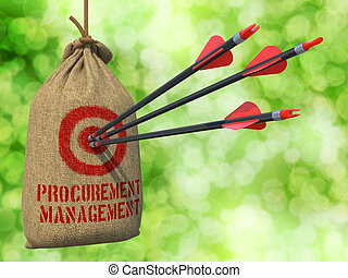 Procurement Management - Arrows Hit in Red Mark Target. -...