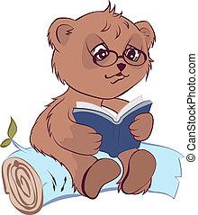 Bear reading open book