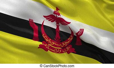 Flag of Brunei loop
