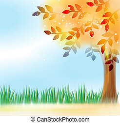 Tree with yellow leaves in front of sky
