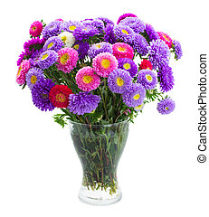 aster flowers - fresh aster flowers bouquet in vase isolated...