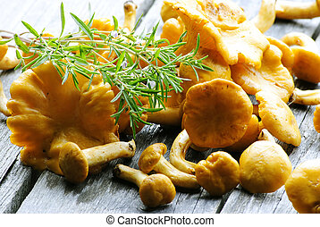 mushrooms with thyme - a great combination of mushrooms with...