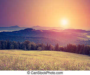 retro mountain landscape - Fantastic sunny hills under...