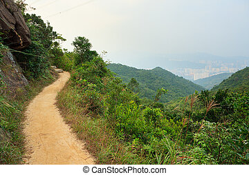 Pathway in hong kong mountains - Pathway to lion rock in...