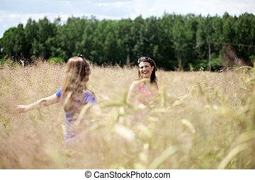 Friends on a field of grain - Female friends on a field of...