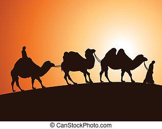 vector caravan of bactrian camels and bedouins in  desert