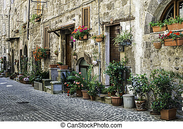 Traditional Italian homes. Old buildings