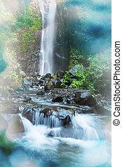 Waterfall in Indonesian jongle
