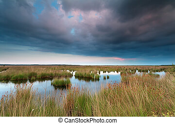 clouded sunset over swamp, Fochteloerveen, Friesland,...