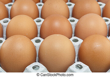 Eggs are a useful source of protein, iodine and essential...