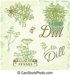 fennel, dill, herb, plant, nature, vintage background,...