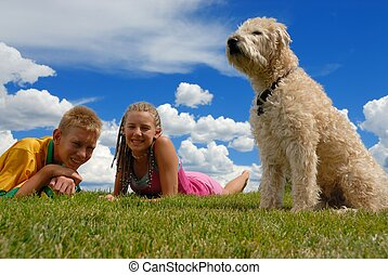 Brother sister and pet - Brother and sister on grass area...