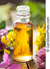 essential oil and medical flowers herbs