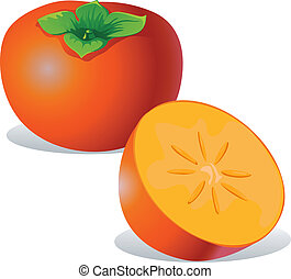 persimmon - vector illustration isolated on white background