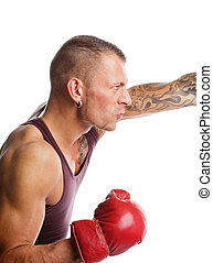 Boxer in the fight - Young muscular man boxing; isolated on...