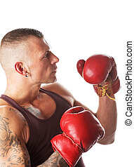 Boxing - muscular young man in boxing gloves, ready to fight