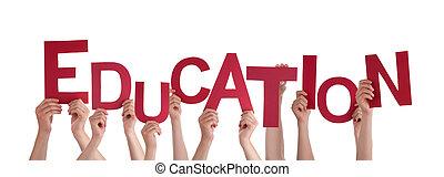 Educação, segurando, mãos