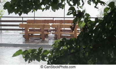 Wooden benchs - Weeping to rain wooden bench in park