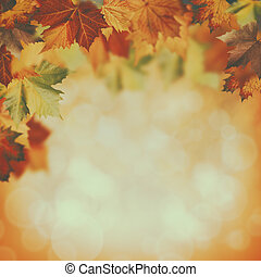 beauty autumnal backgrounds with faded colors