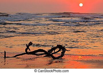 Seascape at sunrise