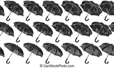 Many Black Umbrellas. 3D render Loop Animation. Isolated on...
