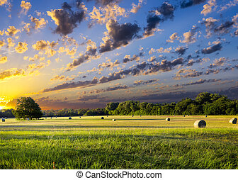 Hay Bales at Sunrise - Tranquil Texas meadow at sunrise with...